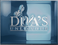 LNP Services - Logo Design - Diva's Unloaded Logo