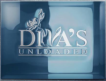 LNP Services - Logo Design  - Diva's Unloaded Logo